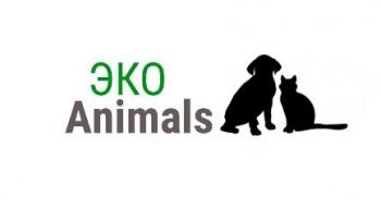 Детская экологическая акция «Животные – наши друзья»