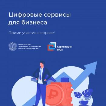 Опрос по цифровым услугам и сервисам для бизнеса